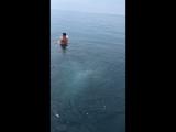 Балаклава. Купание в открытом море