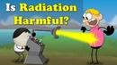 Is Radiation Harmful?   aumsum kids education