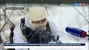 Новости на Россия 24 Главнокомандующий ВМФ России поздравил морских пехотинцев с профессиональным праздником