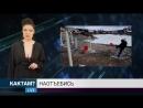 Новости КАКТАМ.TV Таз, говно и палки