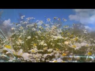 Ромашка (автор: Мария Россол, вокал: Валерий Якшаров, музыка: #2Маши -