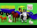 Вместе с трактором, на ферме, учим домашних животных, их голоса. Развивающие мультики для малышей.