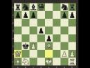 Чёрными играет шахматист с рейтингом 1489.