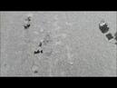 Ирина Одарчук Паули-Хроматический этюд №19 соль минор исполняет автор