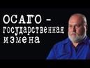 ОСАГО - государственная измена АлексейСороковой