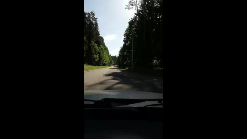 Артем Попов - Live