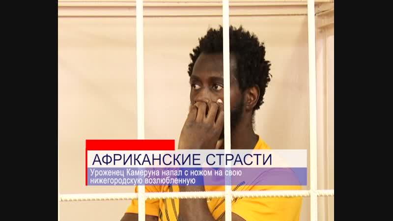 Африканские страсти в Нижнем Новгороде