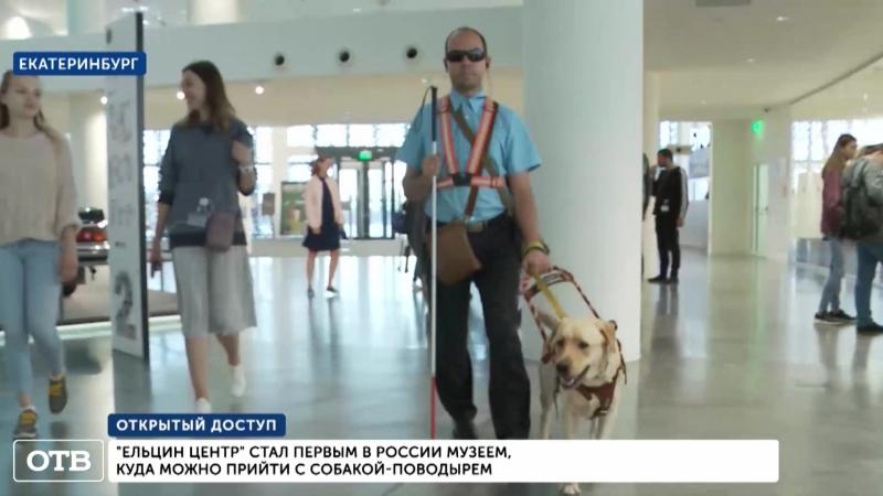 «Ельцин Центр» открыл двери для собак-поводырей