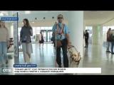 Ельцин Центр открыл двери для собак-поводырей
