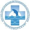 Черноморская конференция 2019