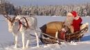 Interview mit dem Weihnachtsmann Rentier - Lappland - Finnland Pello - Video für Kinder