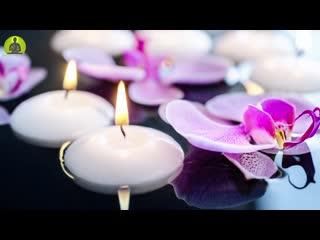 Positive Transformation Meditation Music, Positive Energy Healing Vibration, Relax Mind Body