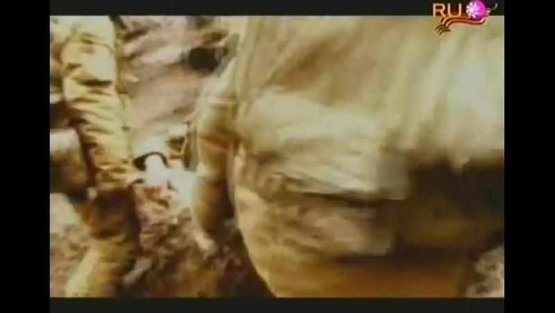 Алексей Глызин 19 лет TV Rip , from LION