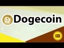 Dogecoin Рассказываем об особенностях монеты Dogecoin