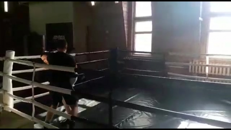 Бокс, Тренер - Виктор Павлов