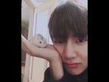 in case you had a bad day a reason to smile today, he hamster gave tae a little kiss at th (1)