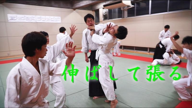 東京稽古会214 伸ばして張る 大東流合気柔術
