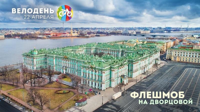 Флешмоб-перфоманс на Дворцовой | Велодень в Санкт-Петербурге