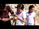 Мохаммед Алаа и детишки дома для кошек Эрнесто... спасают очередную жизнь маленького котеечки.