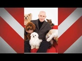 2016 Pet Shop Boys One Hit Wonder original version