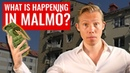 💥 WHAT IS HAPPENING IN MALMÖ? Crime, confusion and opinions