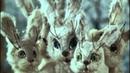 Дедушка Мазай и зайцы (1980) фильм смотреть онлайн