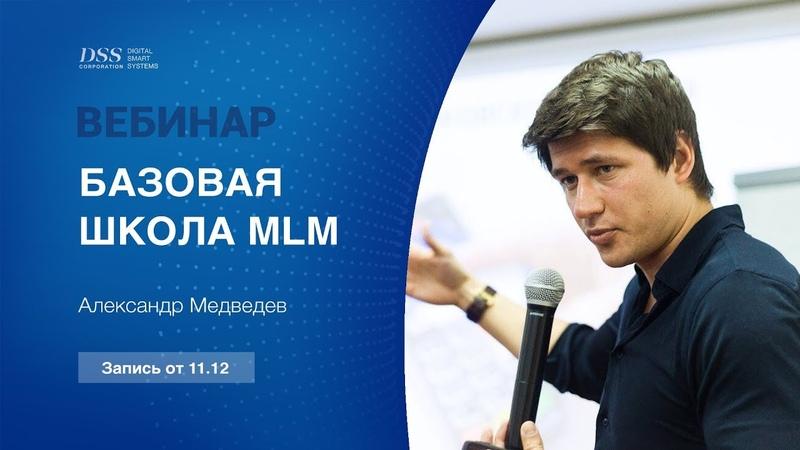 Digital Smart Systems - Базовая школа MLM от Александра Медведева