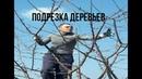 ПОДРЕЗКА ДЕРЕВЬЕВ! Роман Ламбов