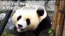 Man Yue Mei Creates A Popular Profile Pic | iPanda