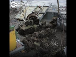 История единственного в Екатеринбурге сада на крыше