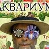 БГ65 | АКВАРИУМ | 14.02.19 | КИРОВ
