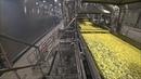 Крупнейшее производство картофеля фри в России. Эксплуатация промышленных полов SIC. Argelith.