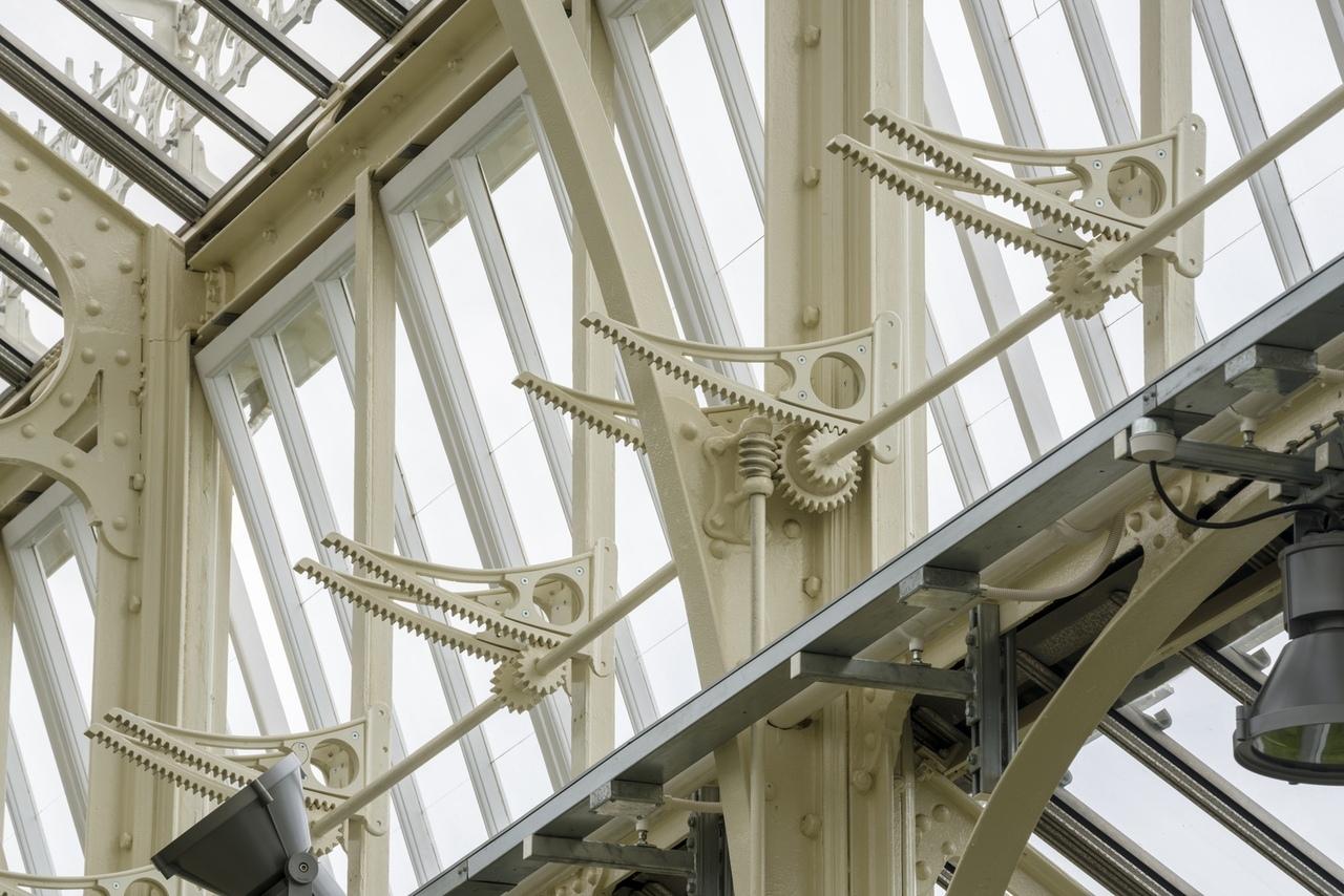 Реконструкция Temperate House в Лондоне