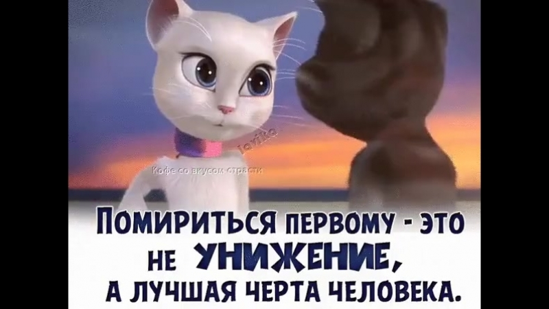 Doc252175634_479304993.mp4