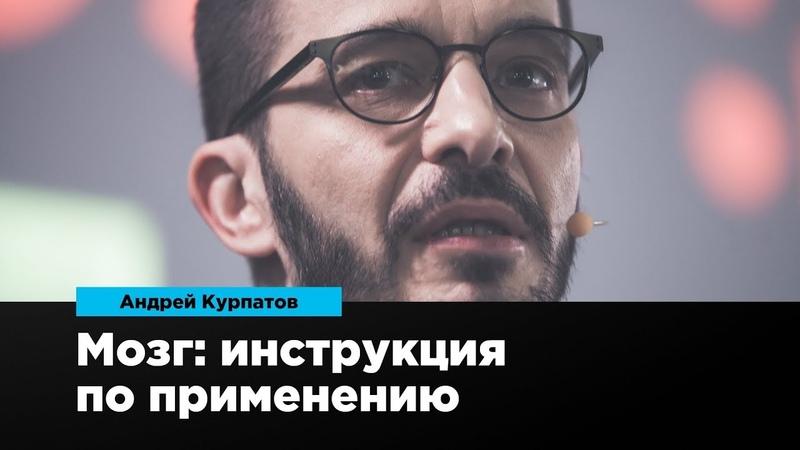 Мозг: инструкция по применению | Андрей Курпатов | Prosmotr » Freewka.com - Смотреть онлайн в хорощем качестве