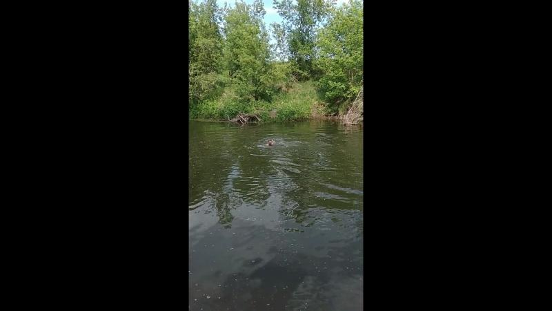 На реке Тойма 02.07.18г.
