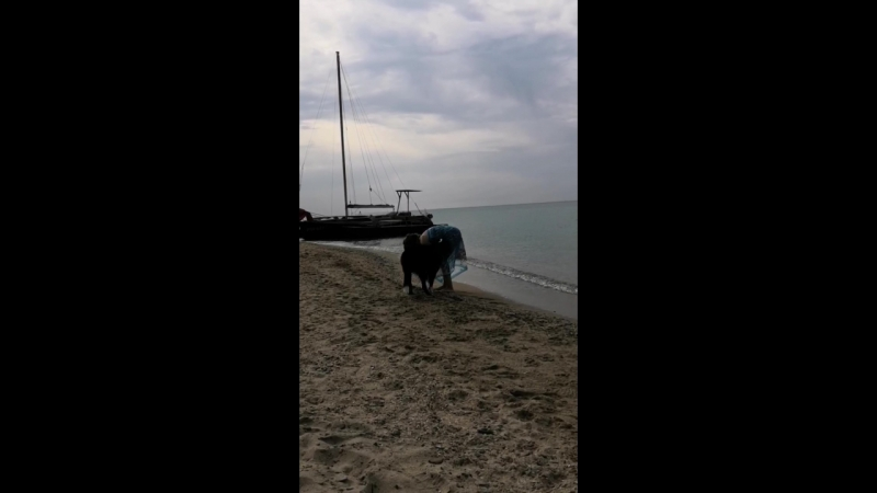 Веселовка пляж август 2018
