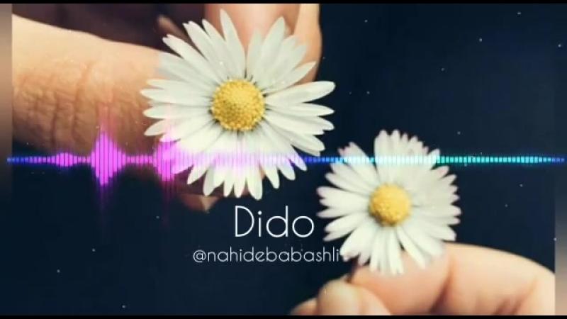 Nahidə Babaşlı Dido Cover mp4