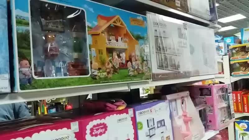Кукольный дом и его обстановка.