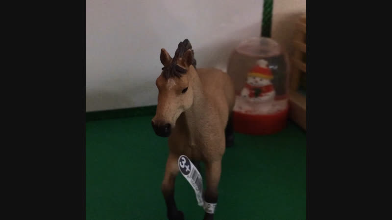 Новый член нашей огромной конной семьи