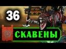 Скавены прохождение Total War Warhammer 2 за Квика 36