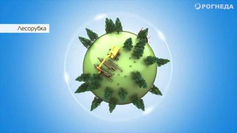 Защита древесины от плесени гниения синевы антисептики Биосепт Биотор Биосепт Транс