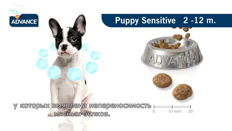 Advance Baby Protect Puppy Sensitive RU (1)