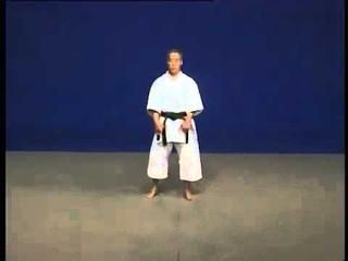 Shito Ryu Pinan Nidan Kata & Bunkai by Hidetoshi Nakahashi