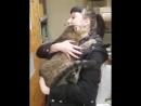 Девушка пришла в приют выбрать кошку но животное само выбрало себе хозяйку