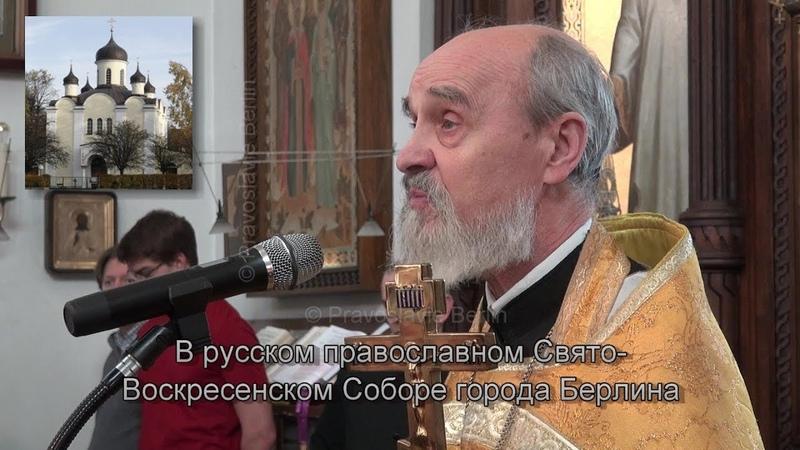 Как нам смотреть на человека? Проповедь протоиерея Михаила 17.02.2019, Берлин.