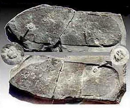 НЕИЗВЕСТНАЯ АРХЕОЛОГИЯ: АРТЕФАКТЫ ПРОШЛОГО — ЗАГАДКИ ИСТОРИИ Запретная археология – реликты прошедших эпох, которые не вписываются в миропонимание современных людей, но не потому, что мы – люди