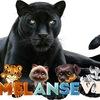 MelAnSeVi