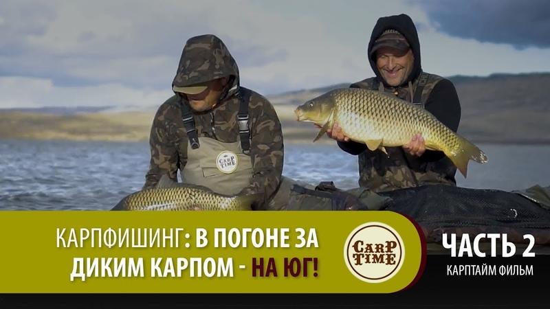 Карпфишинг В погоне за ДИКИМ КАРПОМ на ЮГ Часть 2