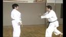 Karate Kihon Ippon Kumite 13 16